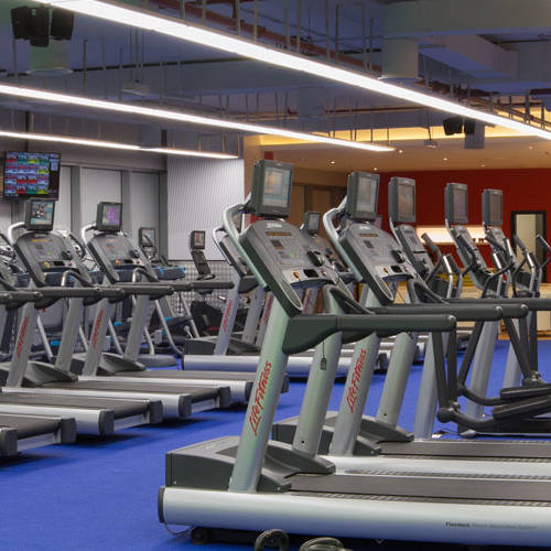 Fitness First Al-Barsha treadmills and cross machines